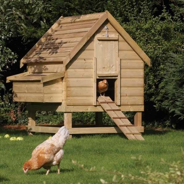 Chicken Coop Large