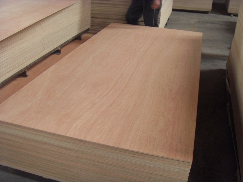 Red Hardwood Faced Ply Hardwood Face Veneer Devon And