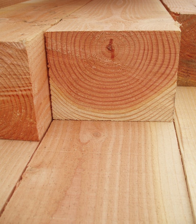 Douglas Fir Timber | Devon and Cornwall | Large sections and Long length