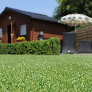 Barking Artificial Grass